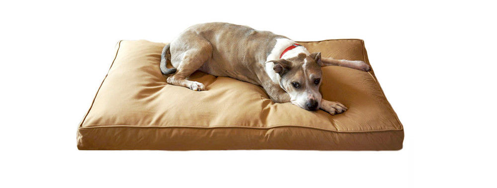 China best Shredded Memory Foam Dog Bed on sales