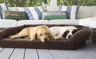 Luxury Suede Memory Foam Orthopedic Dog Bed , Non - Slip Bottom Orthopedic Egg Crate Dog Bed