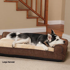 Water Resistant Memory Foam Orthopedic Dog Bed , Soft Large Foam Dog Bed