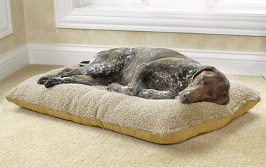 Indoor Memory Foam Cuddler Dog Bed , Grey Mint Medium Memory Foam Dog Bed